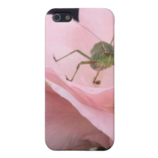 bug on a rose iPhone 5 cover