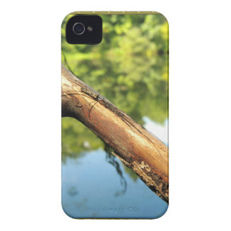 Bug on a Stick iPhone 4 Cases