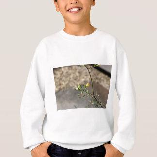 Bug on Flower Sweatshirt