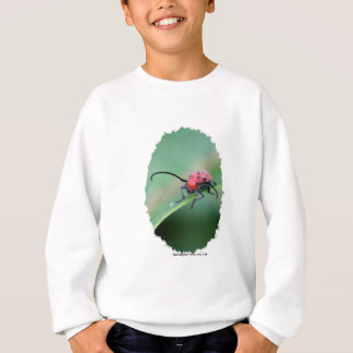Bug With Attitude Nature Photo Youth Sweatshirt