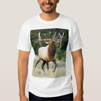 "Bugleing Elk 3, ""Call of the Wild"" Tshirts"