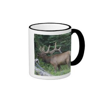 Bugling elk in Banff National Park, Canada. Ringer Mug