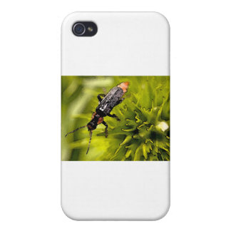 bugs iPhone 4 cover