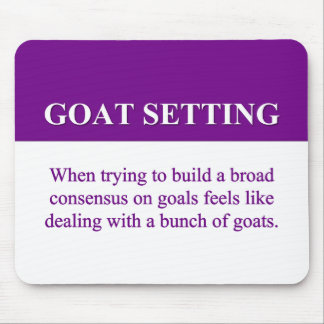 Building Consensus on Goal Setting (2) Mousepads