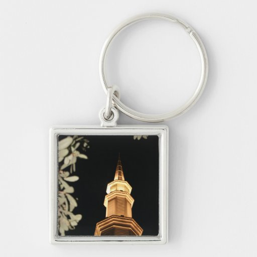 Building dome and leaf frame Silver-Colored square key ring