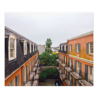 Buildings and Palm Trees in New Orleans Photo Print