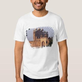 Buland Darwaza Gate of Victory) to the Dargah T Shirt