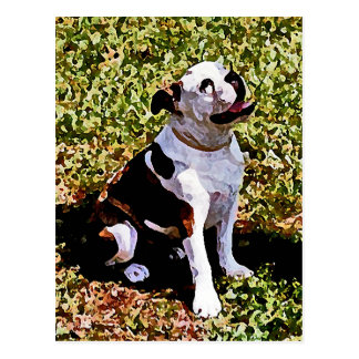 Buldog Sitting with Mouth Open Postcard