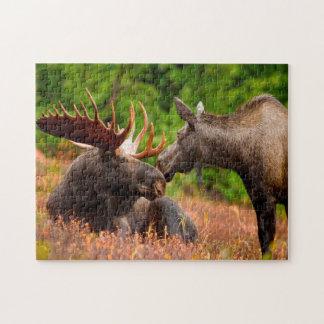 Bull and Cow Moose Alaska. Jigsaw Puzzle