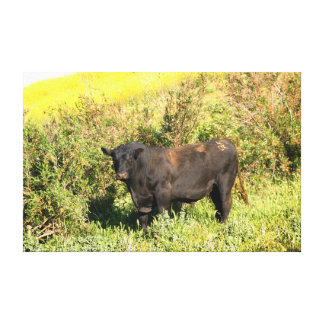 Bull Stretched Canvas Print