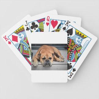 Bull Dog Poker Deck
