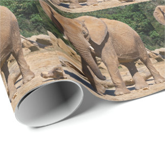 Bull Elephant Wrapping Paper