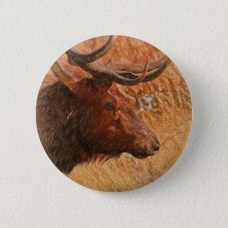 Bull Elk 6 Cm Round Badge