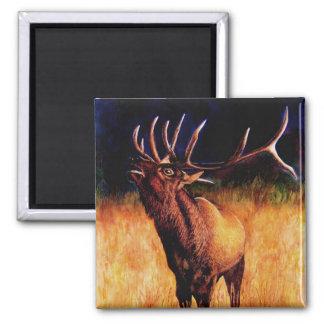 Bull Elk Call Of The Wild, Magnet