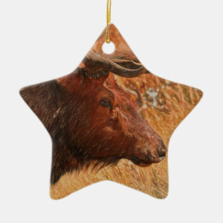 Bull Elk Ceramic Star Decoration