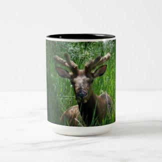 Bull Elk Coff Mug