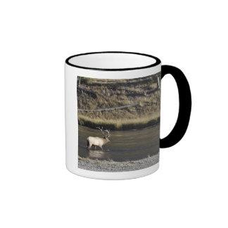 Bull Elk Crossing Madison River, Yellowstone 2 Ringer Mug