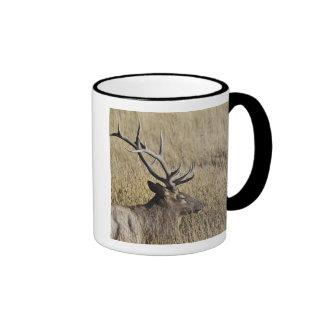 Bull Elk Crossing Madison River, Yellowstone 3 Coffee Mug