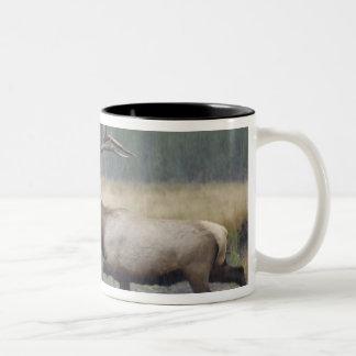 Bull Elk crossing river in snowstorm, Two-Tone Mug