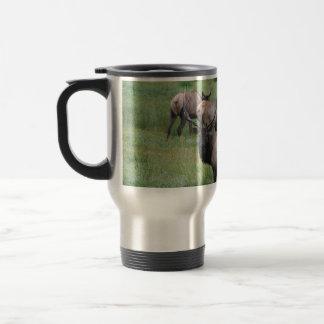 Bull Elk & Herd Mugs