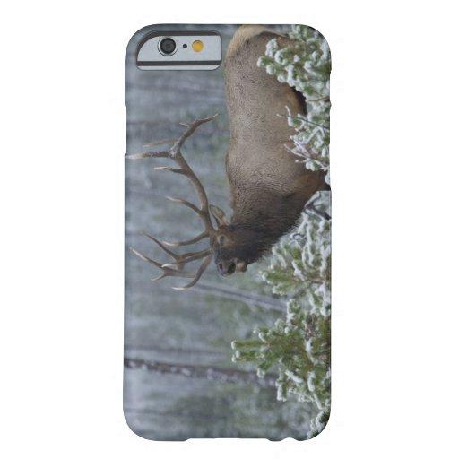 Bull Elk in snow calling, bugling, Yellowstone iPhone 6 Case