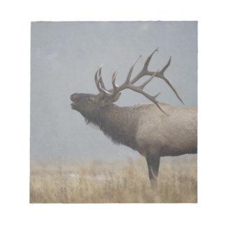 Bull Elk in snow storm calling, bugling, Note Pad
