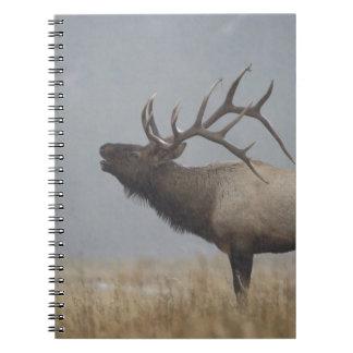 Bull Elk in snow storm calling, bugling, Spiral Notebooks