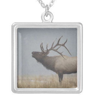 Bull Elk in snow storm calling, bugling, Square Pendant Necklace