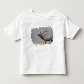 Bull Elk in snow storm calling, bugling, Toddler T-Shirt