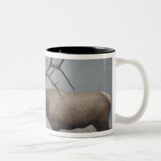 Bull Elk in snow storm calling, bugling, Two-Tone Mug