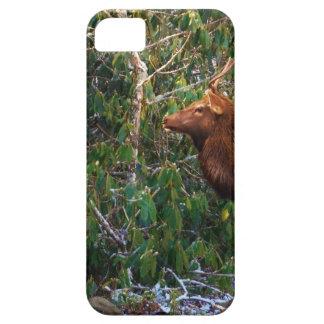 Bull Elk in Trees iPhone 5 Cover