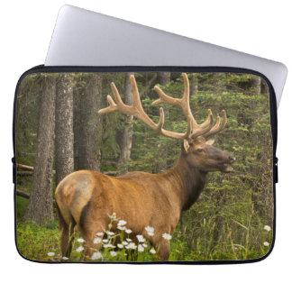 Bull elk in velvet, Canada Laptop Sleeve