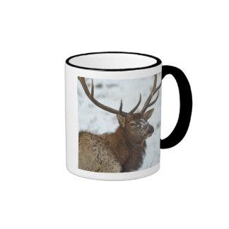 Bull elk in winter in Yellowstone National Ringer Mug