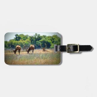 Bull Elk Luggage Tag