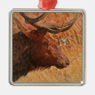 Bull Elk Silver-Colored Square Decoration