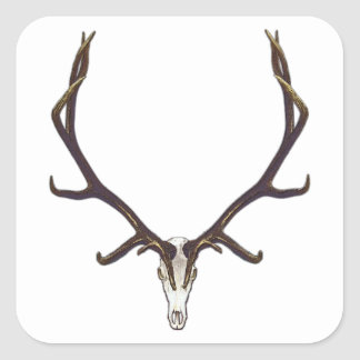 Bull elk skull color square sticker