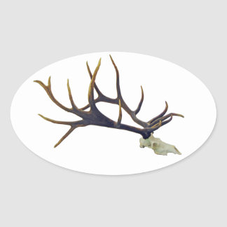Bull elk skull side view oval sticker