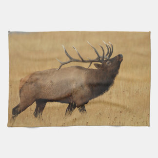 Bull Elk with Head Back Tea Towel