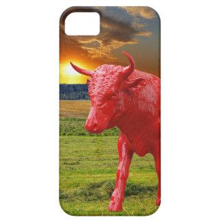 Bull iPhone 5 Cases