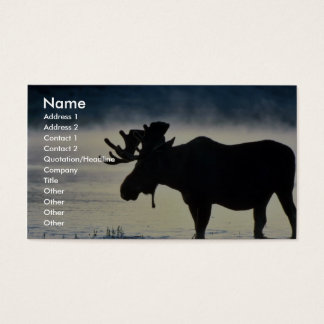 Bull moose business card