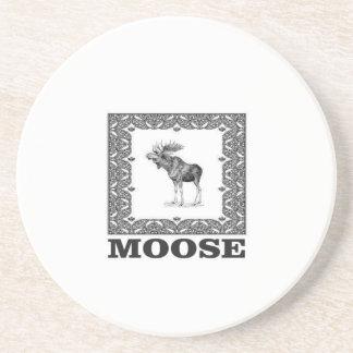 bull moose in a frame coaster
