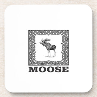 bull moose in a frame coaster