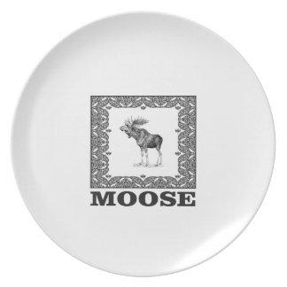 bull moose in a frame plate