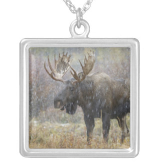 Bull moose in snowstorm with aspen trees in square pendant necklace
