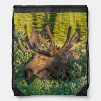 Bull moose in velvet, Colorado Drawstring Bag