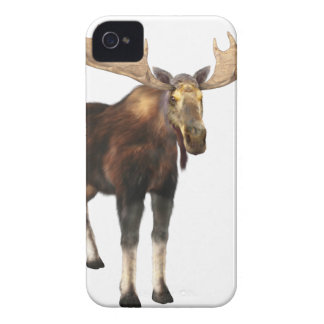 Bull Moose Looking to the Front iPhone 4 Case-Mate Cases