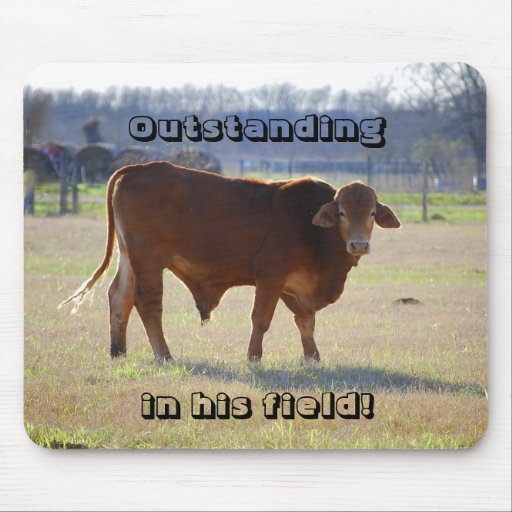 Bull Oustanding in His Field Mousepad