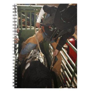 Bull rider tying rope on bull in the chute notebooks