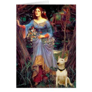 Bull Terrier 1 - Ophelia 1 Card