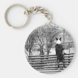 Bull terrier basic round button key ring